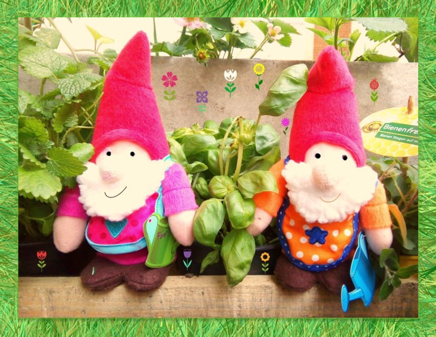 #Gartenzwerg #garden gnome