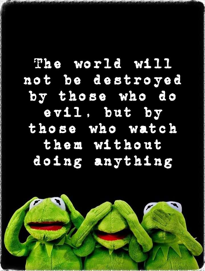 Einstein quote the world will not be destroyed by those who do evil be kitschig blog