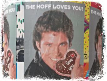David Hasselhoff Berlin The Hoff Loves You Circus Hostel