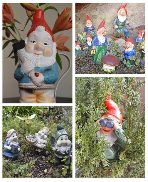 Happy Gnomevember
