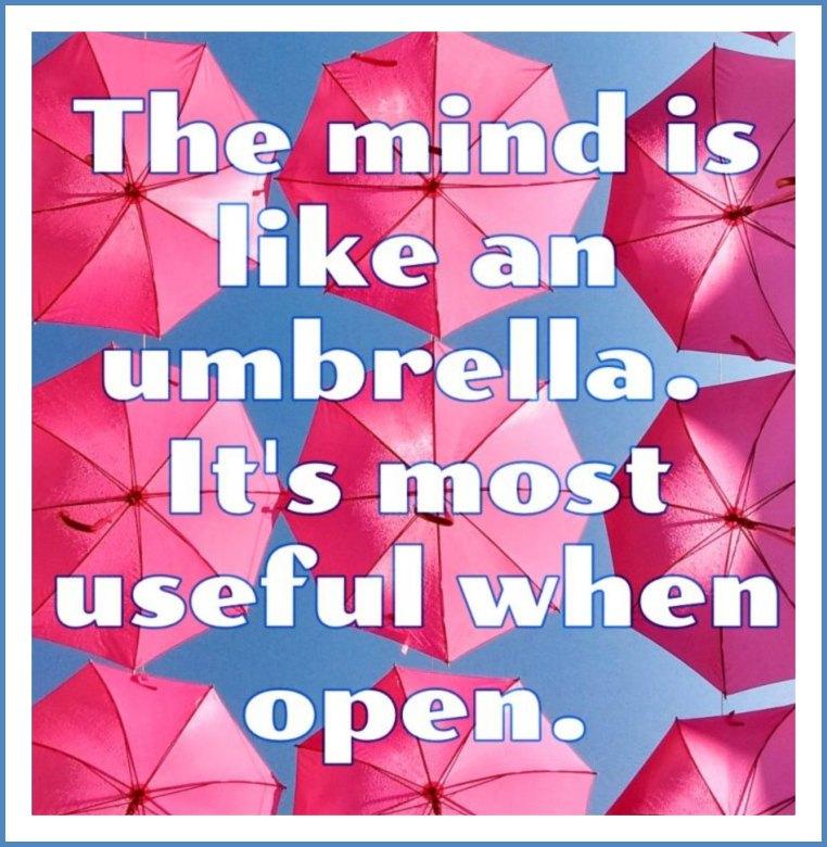 Umbrella quote walter gropius be kitschig blog