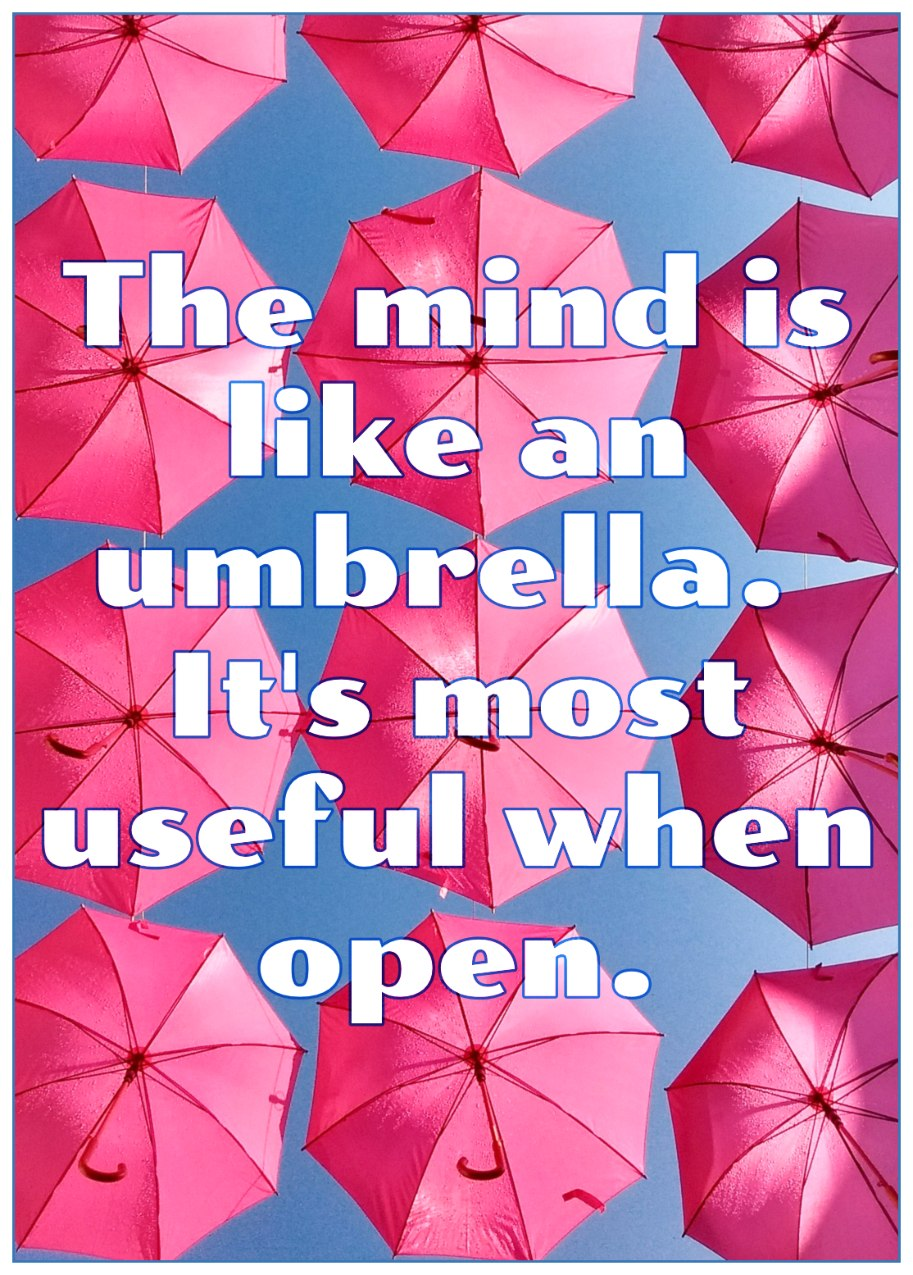 The mind is like an umbrella. Its most useful when open. Quote Walter Gropius