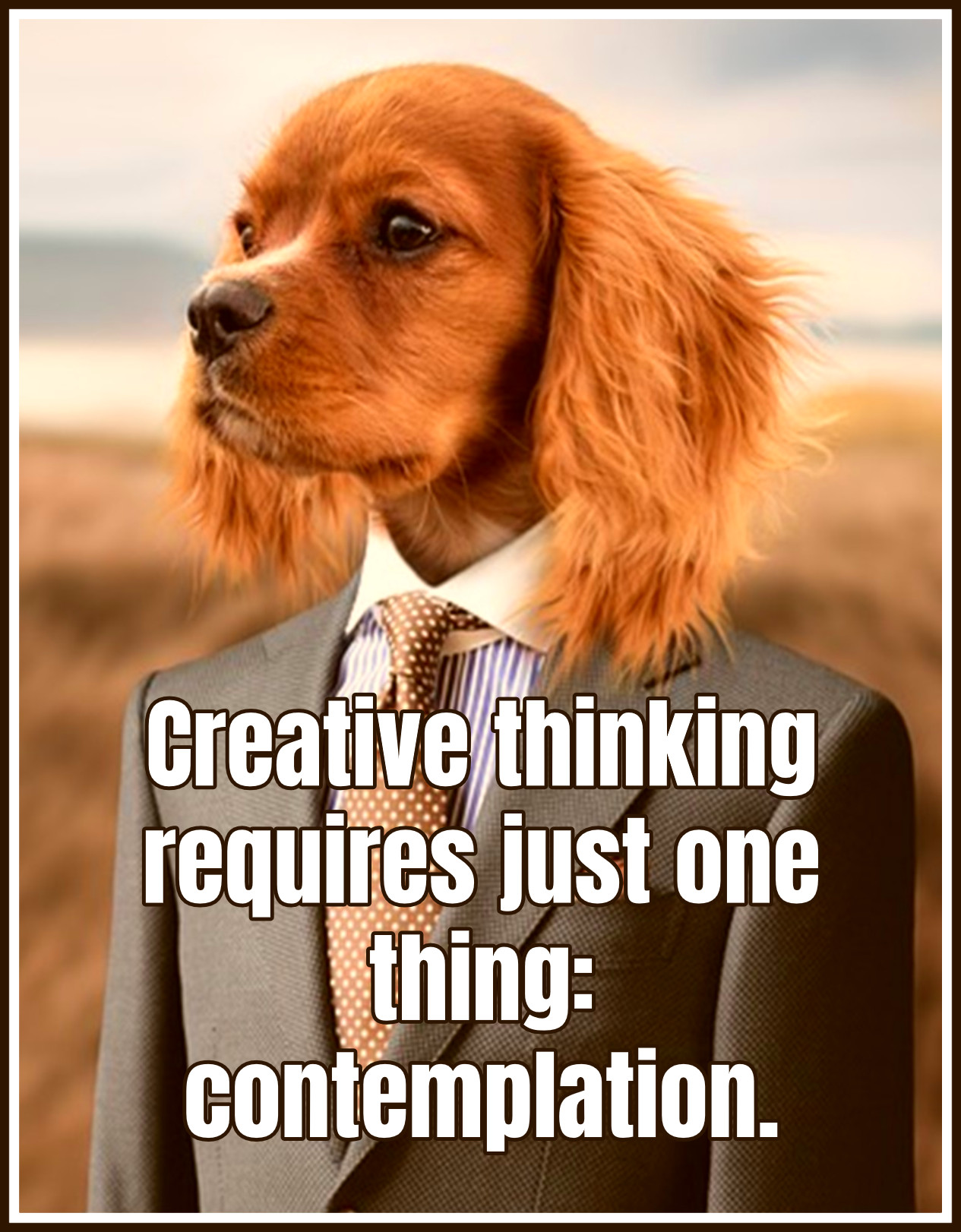 Quote Creative thinking requires just one thing contemplation Quote John S Couch