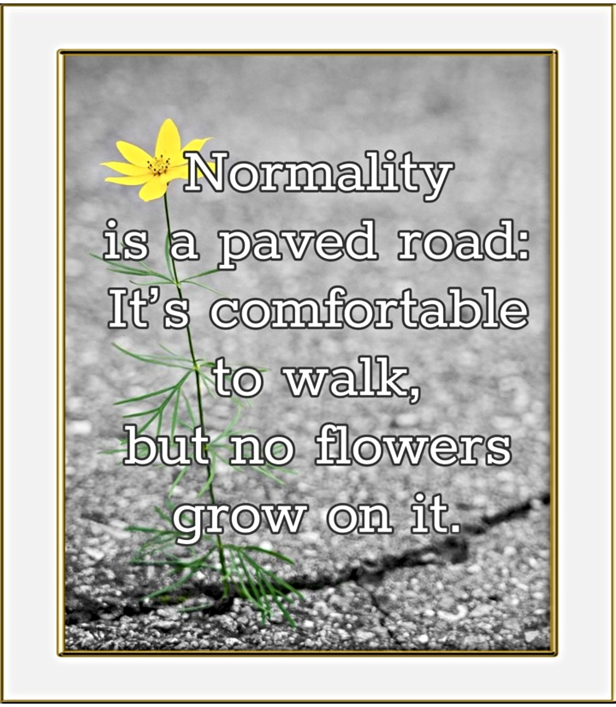 Normality is a paved road: It's comfortable to walk, but no flowers grow on it Quote Van Gogh bekitschig blog